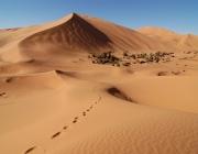 Desert del Sàhara amb petjades de persones