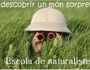 L'Escola de Naturalistes del GEPEC