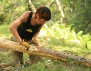 Tasques de manteniment del bosc / Font: Projecte Boscos de Muntanya