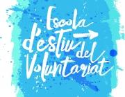Imatge Escola d'Estiu del Voluntariat (font: www.voluntariat.org)