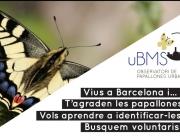 Presentació l'observatori de papallones urbanes