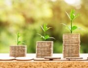 Les entitats sense ànim de lucre tenen la possibilitat d'invertir tenint en compte una sèrie d'indicacions. Font: Pixabay.