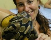 Durant una activitat de maneig de reptils al CRARC (imatge:Irene Cervera)