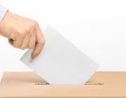 Dincat reclama el dret a votar de les persones amb discapacitat