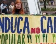 La Manduca No Caduca.  Font: Associació de Naturalistes de Girona