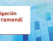 Ajuts a la investigació Ignacio Hernando de Larramendi 2016