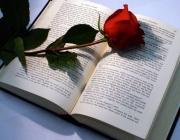 Llibre amb rosa a sobre. Font: cultura21.comunicacio21.cat