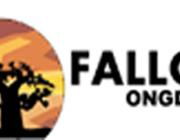 Fallou ONGD