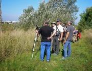 Marató Ornitològica al Delta del LLobregat (imatge: Depana)
