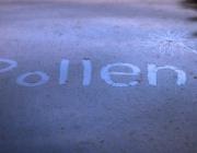 Pollen. Fotografia de l'usuari Flickr Dome Poon