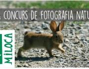 Miloca organitza un concurs de fotografia de natura (imatge: miloca)