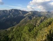 Imatge de l'entorn de la Muntanya d'Alinyà (imatge: fundaciocatalunya-lapedrera.cat)