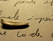 Navegant entre paraules... Imatge CC BY-NC-ND 2.0 de Joan Abella (...)