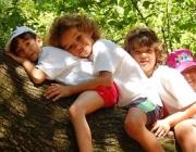 Imatge nens a l'arbre. Font: Canal Esplai