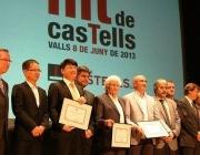 Edició de la Nit de Castells