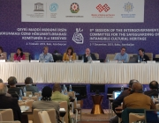 Imatge de la sessió plenària del Comitè