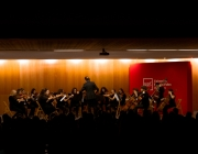 Orquestra de cambra UPF Cultura (Font: UPF Cultura)