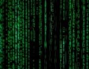 Segons l'ONU, els mateixos drets que els ciutadans tenim en el món físic com ara la privacitat, l'accés a la informació o la llibertat d'expressió haurien de estar protegits també a Internet.  Font: Markus Spiske (Pexels)