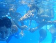 Dins l'aigua. Font: Fundació Comtal