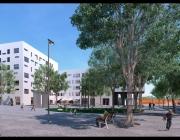 Reconstrucció de la Plaça dels Eucaliptus després de les obres