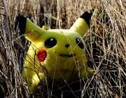 Pikachu amagat en un bosc. Font: Sadie Hernandez, Flickr