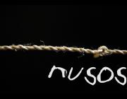 Nusos, històries de vides migrades