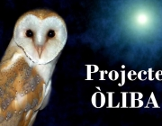 Imatge del projecte Oliba de l'APNAE (imatge; APNAE)