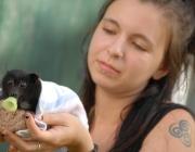 """El 15 de desembre s'estrena a Granollers el documental """"Humans i Ratpenats"""" (imatge:humans-and-bats.com)"""