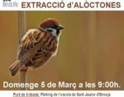 Jornada de voluntariat ambiental a Riet Vell el 5 de març (imatge: Reserva de Riet Vell )
