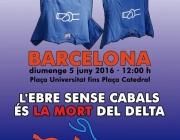 Cartell de la manifestació en defensa de l'Ebre del 5 de juny de 2016 (ebre.net)