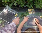 Rutes Ciutat Natura Font: alehop exploradores urbanos