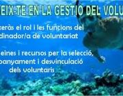 Gestió del voluntariat