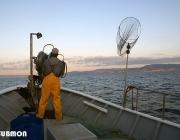 Els pescadors d'Arenys col·laboren amb entititas ambientals i institucion científiques per practicar la pesca sostenible (imatge:submon.org)