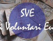 Voluntariat de permacultura