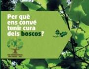 Per què ens convé tenir cura dels boscos?