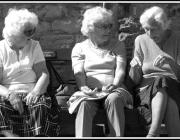 Gent gran. Font: S.Lymath (Flickr)