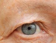L'ull d'una àvia, que al projecte representa la mirada d'aquest col·lectiu