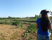 Visita del grup de consum El Rebost del Delta de Gavà als camps de La Trama