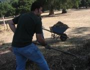 Noi fent voluntariat ambiental. Font: marioanima (Flickr)