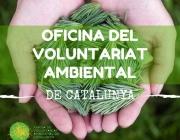 El portal voluntariatambiental.cat posa en contacte persones i entitats ambientals. (imatge: voluntariatambiental,cat)