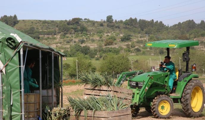 Pagesos i pageses expliquen a través de vídeos com han produït aquell aliment. Font: Cooperativa Social MANS