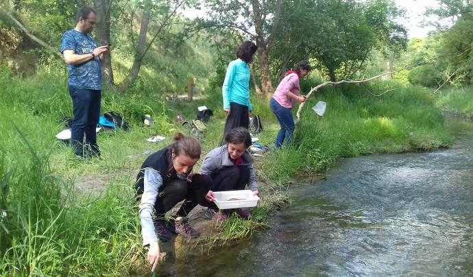 La inspecció dels rius es una de les tasques organitzades per Hàbitats Font: Associació Hàbitats