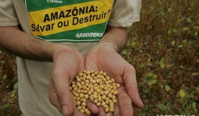 Font: Greenpeace