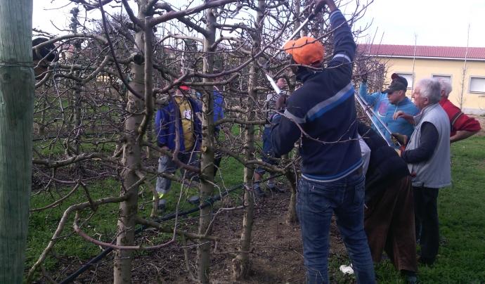 Classe de formació professional a Mollerussa (Pla d'Urgell) dels programes d'inserció laboral Font: Fundació Pagesos Solidaris