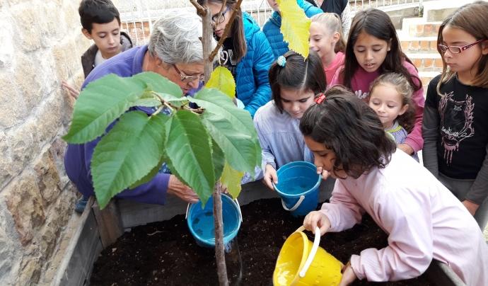 Activitat taller agricultura en una escola de Juncosa (Garrigues) Font: Fundació Pagesos Solidaris