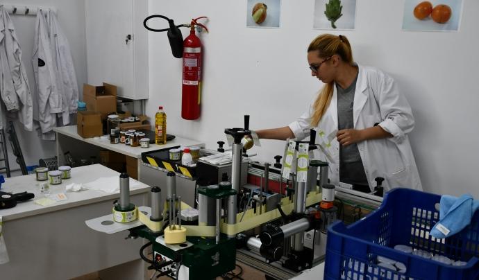 Espigoladors té programes d'inserció laboral i formació, sobretot al barri de Sant Cosme. Font: Suport- Associatiu. Font: Font: Suport Associatiu.