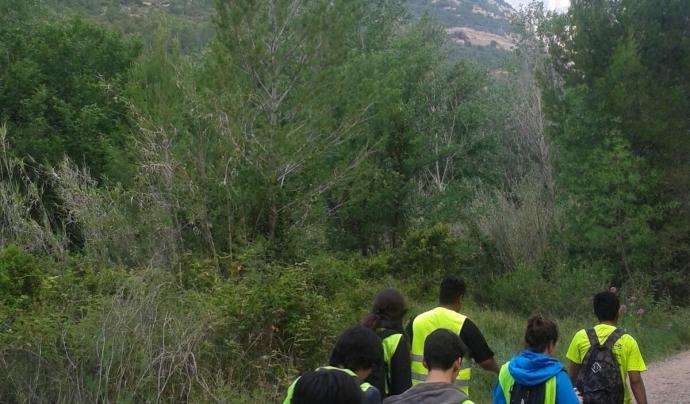 Adolescents i joves durant la Caminada a peu del Casal dels Infants a Montserrat.