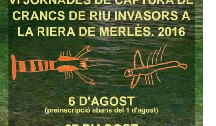 Enguany les jornades estan previstes pel 6 i el 27 d'agost (imatge: adeffa)