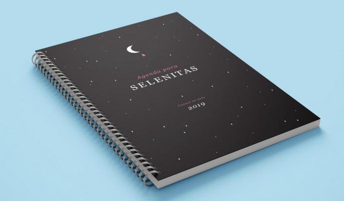 L'agenda menstrual que ha dissenyat l'artivista catalana Zinteta.  Font: Zinteta