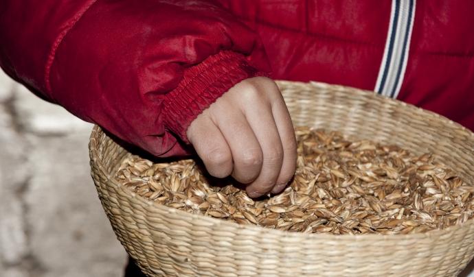 A la fleca de l'Aresta fan servir cereals ecològics de pageses locals. Font: L'Aresta